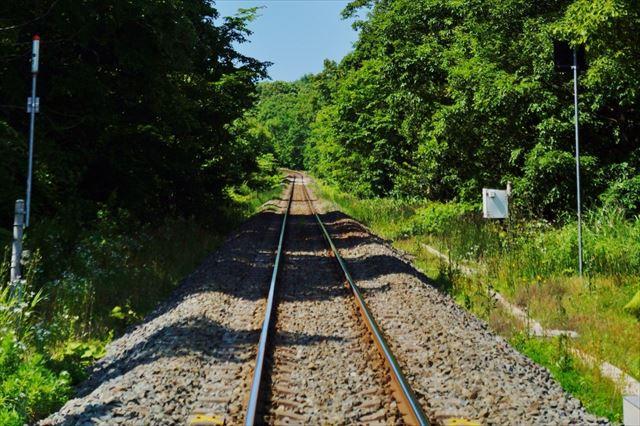 線路と木3E1_R